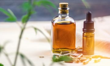 Rising Popularity For The Cannabis Oil Usages