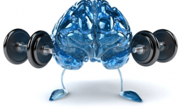 Weightlifting Mind-Muscle Connection And Everything In Between